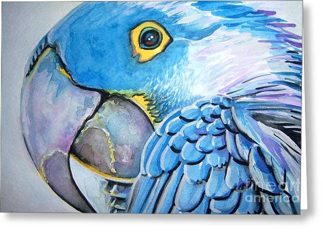 Blue Parrot Greeting Card by Ken Huber