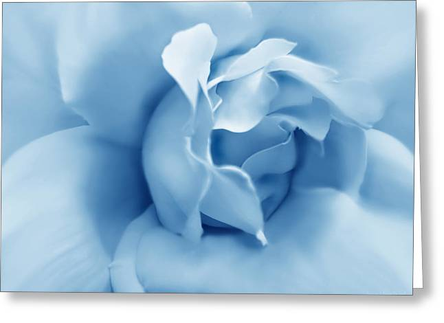 Blue Pastel Rose Flower Greeting Card by Jennie Marie Schell
