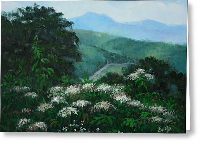 Blue Ridge Summer Greeting Card