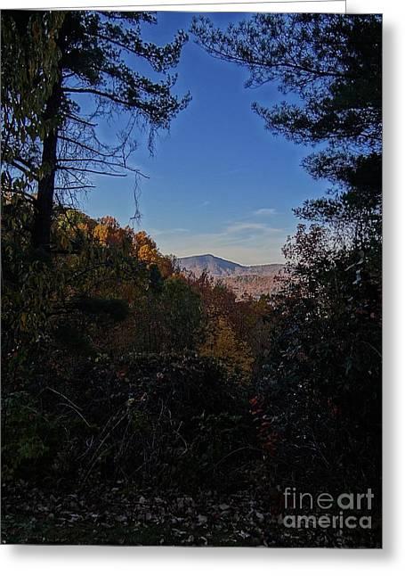 Blue Ridge13 Greeting Card by Steven Lebron Langston