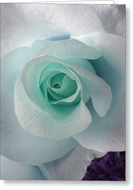 Blue Rose Greeting Card by Robin Hewitt