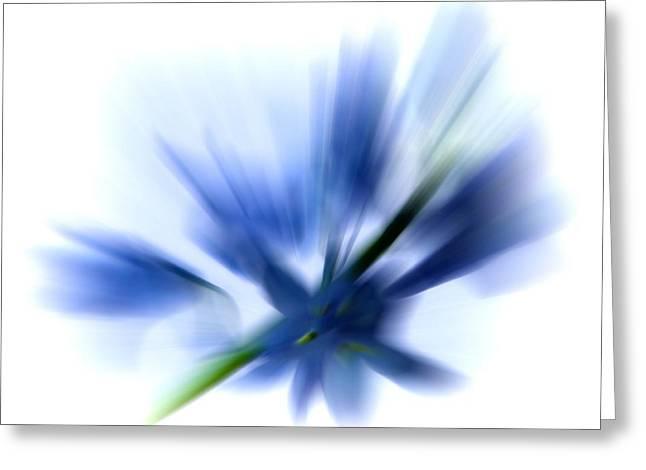 Blue Greeting Card by Sharon Lisa Clarke