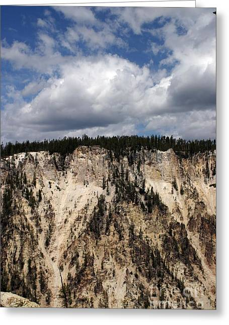 Blue Skies And Grand Canyon In Yellowstone Greeting Card by Living Color Photography Lorraine Lynch
