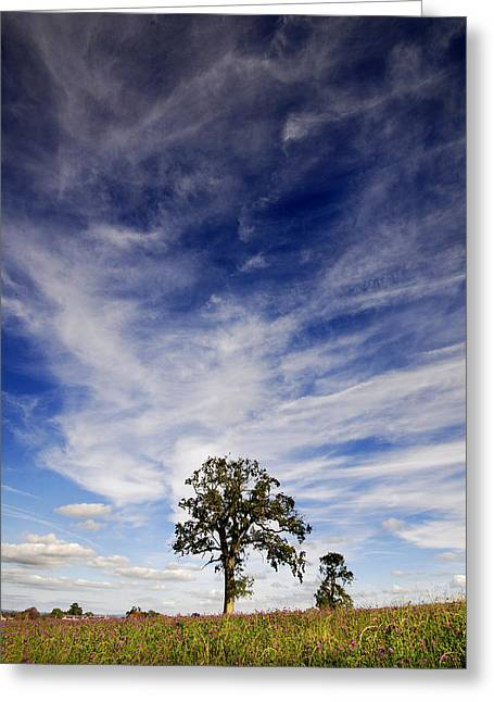 Greeting Card featuring the photograph Blue Skies Smiling At Me  by John Chivers