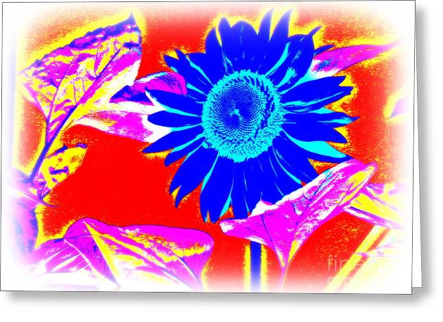 Blue Sunflower Greeting Card by Pauli Hyvonen