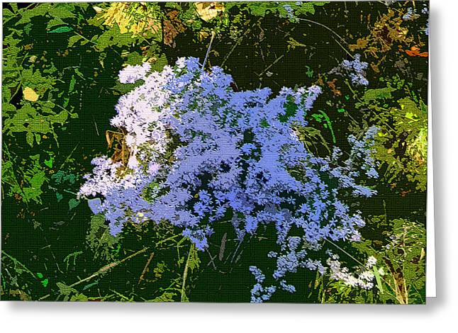 Blue Wild Flowers Greeting Card by Mindy Newman