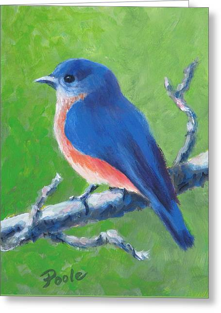Bluebird In Spring Greeting Card