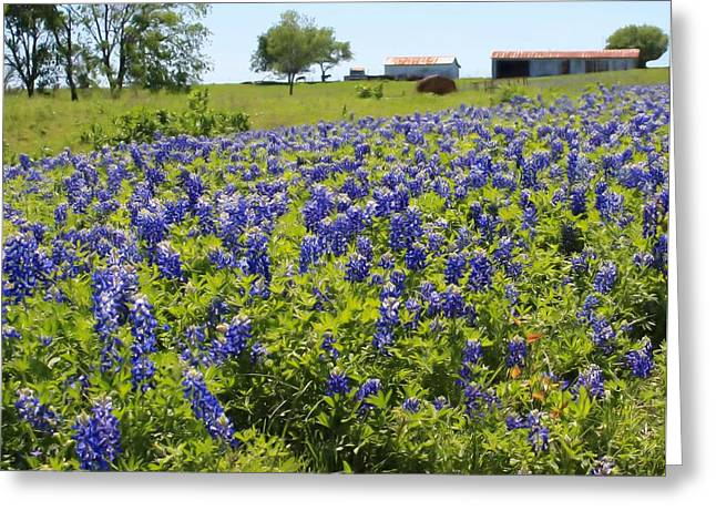 Bluebonnet Farmhouse Greeting Card by Lynnette Johns