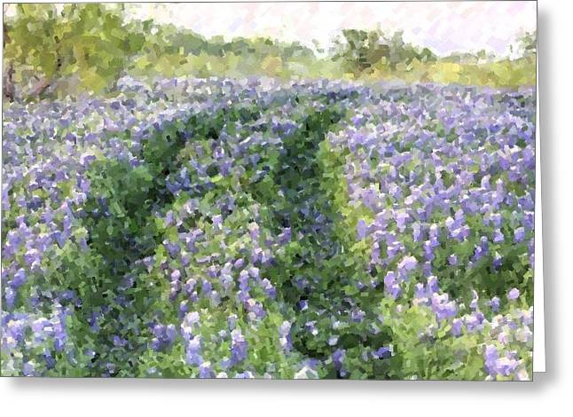 Bluebonnet Trail Greeting Card