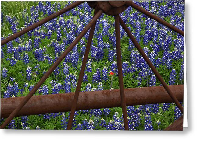 Bluebonnets And Rusted Iron Wheel Greeting Card