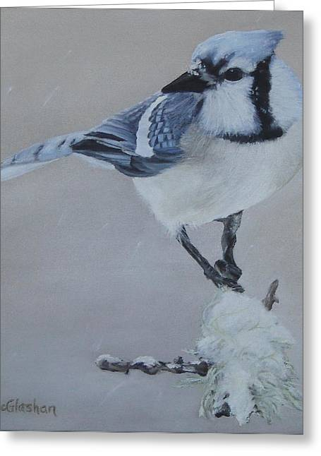 Bluejay In Winter Greeting Card by Traci McGlashan