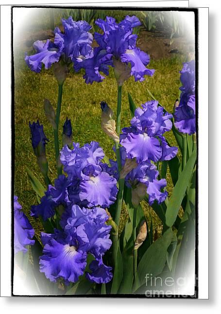 Bluest Of Blue 2  Greeting Card by Susan  Lipschutz