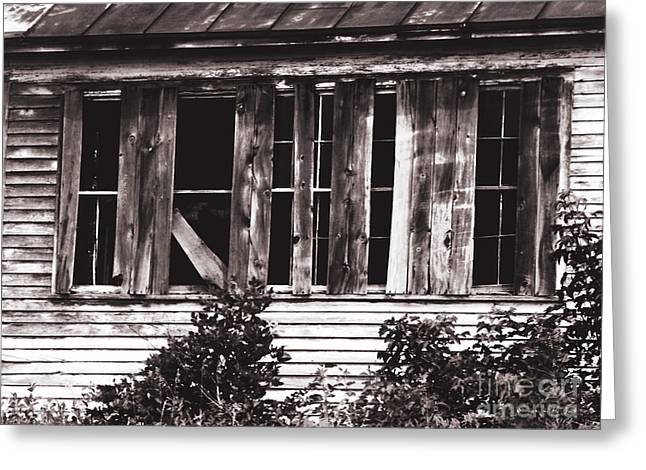 Boarded Up Greeting Card by Ms Judi