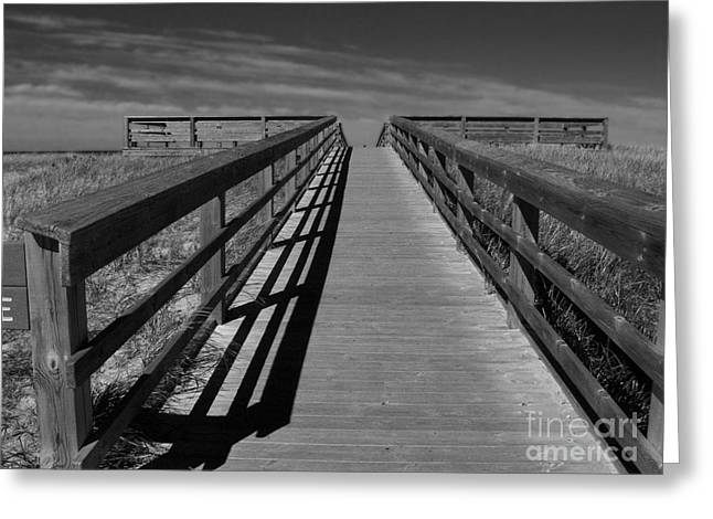 Boardwalk Greeting Card by Lin Haring