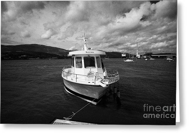 Boat Used As A Small International Passenger Ferry Crossing The Mouth Of Carlingford Lough Greeting Card by Joe Fox