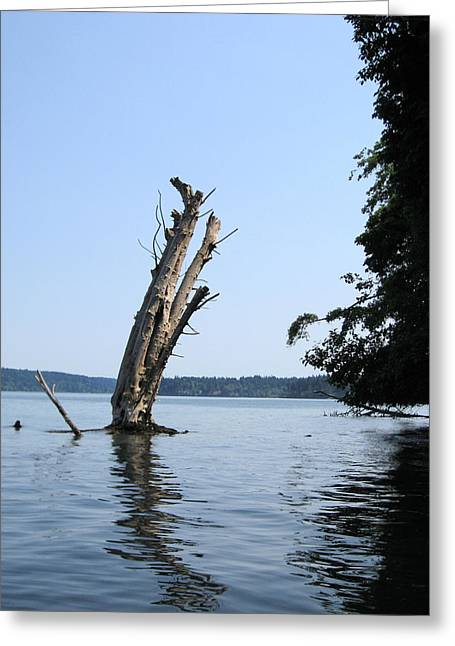 Greeting Card featuring the photograph Boaters Nightmare by Kym Backland