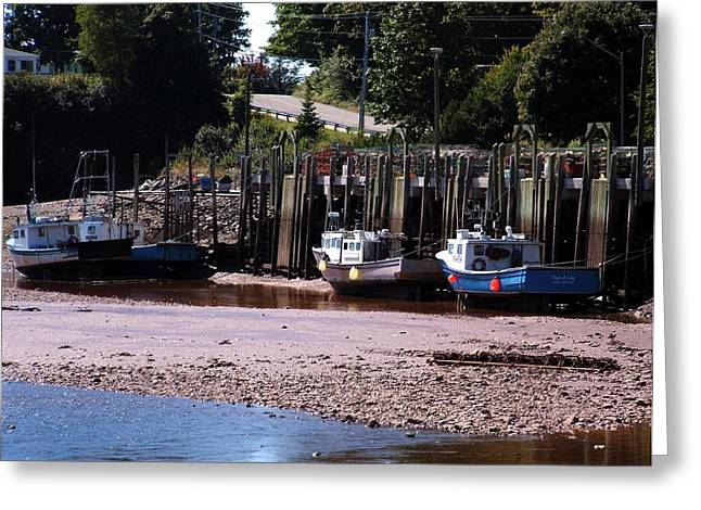 Boats In Bay Of Fundy Greeting Card by David Gilman
