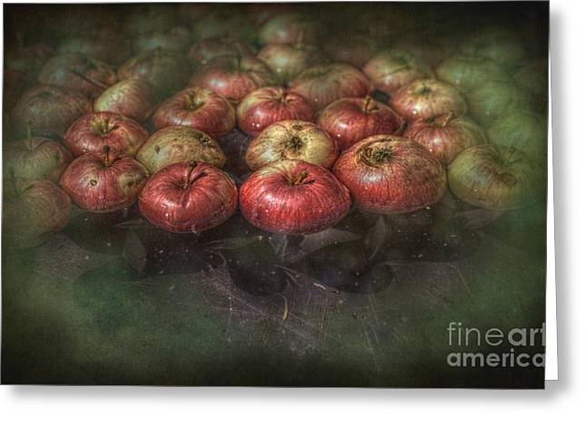 Bobbing Apples Greeting Card by The Stone Age