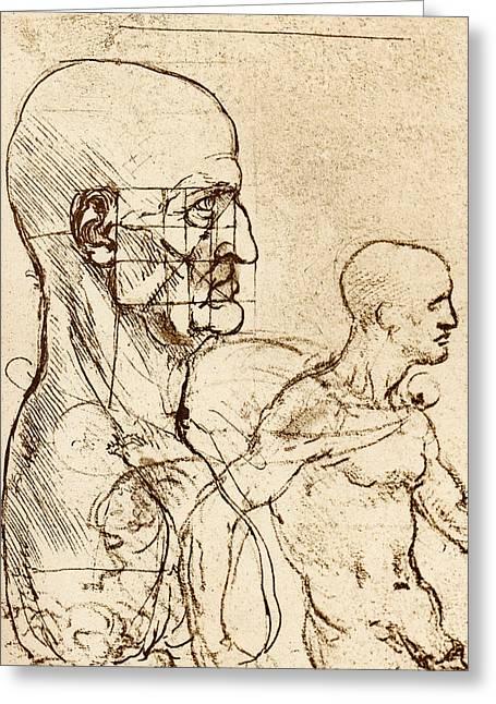 Body Anatomy Greeting Card by Sheila Terry
