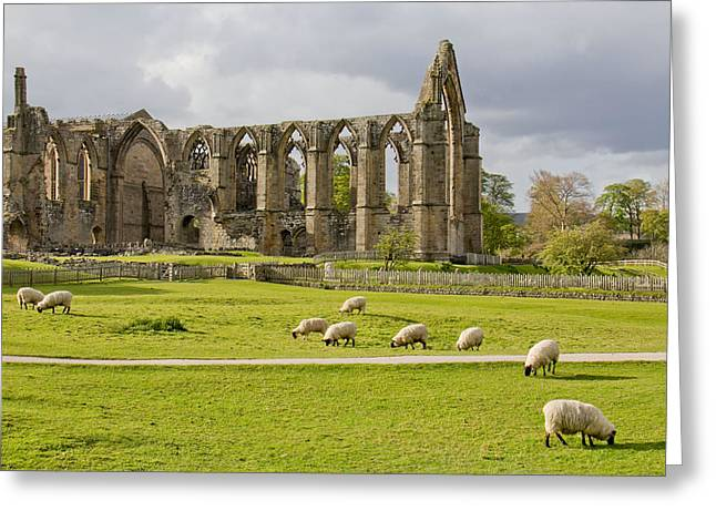 Bolton Abbey 1 Greeting Card by Mary Hershberger
