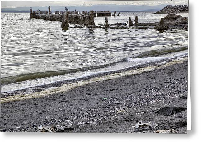 Bombay Beach Salton Sea Greeting Card