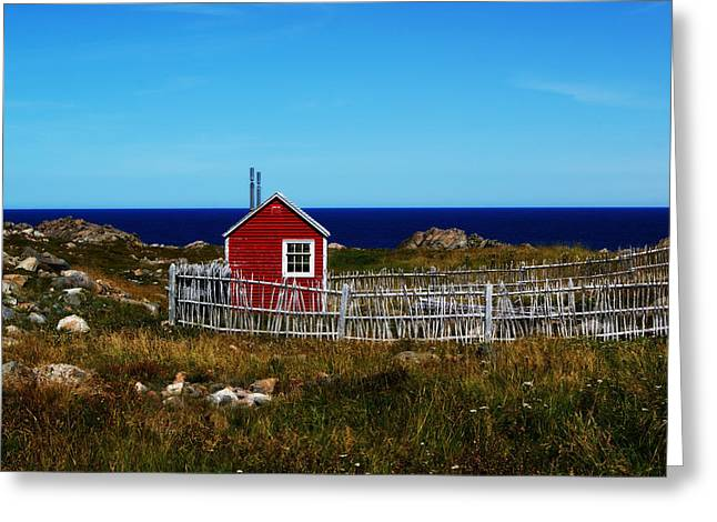 Bonavista Greeting Card by Leanna Lomanski
