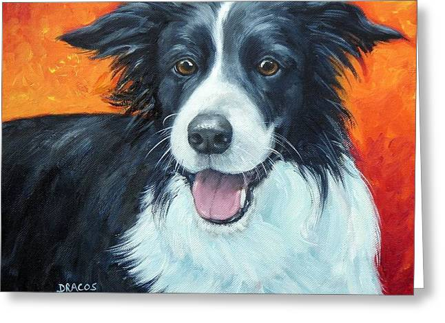 Border Collie On Red Greeting Card by Dottie Dracos