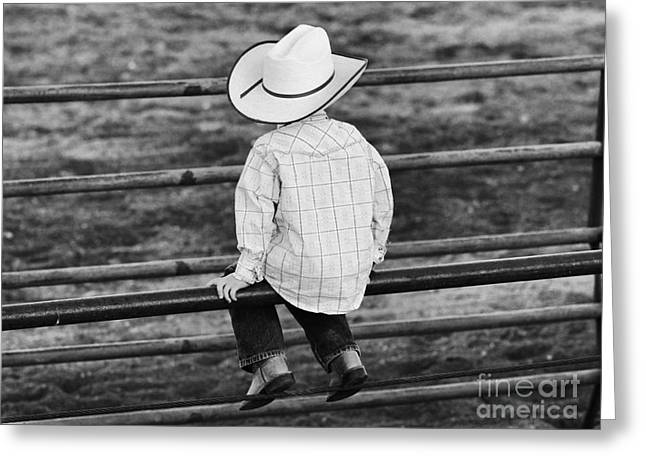 Born To Be A Cowboy Greeting Card by Edward R Wisell