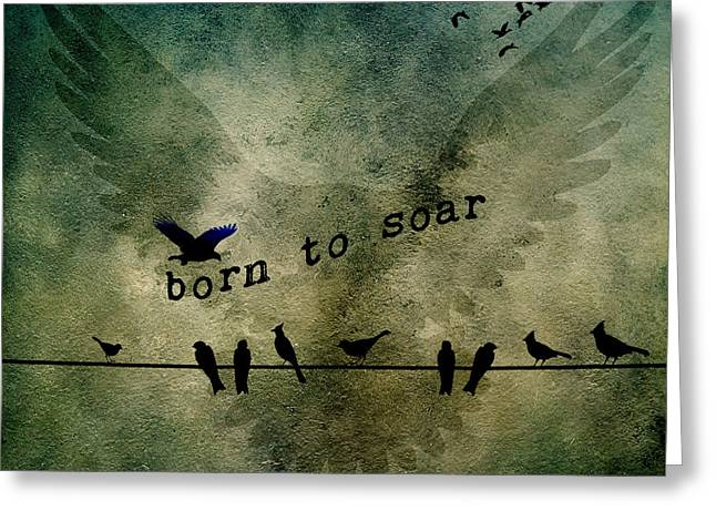 Born To Soar Greeting Card