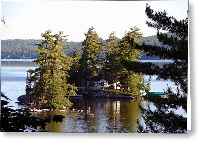 Boshkung Lake Island Cottage Greeting Card by Bruce Ritchie