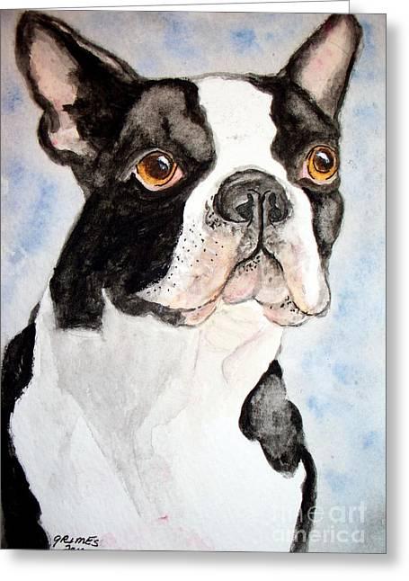 Boston Terrier Greeting Card by Carol Grimes