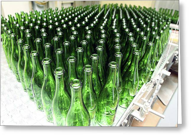 Bottles At A Wine Bottling Factory Greeting Card by Ria Novosti