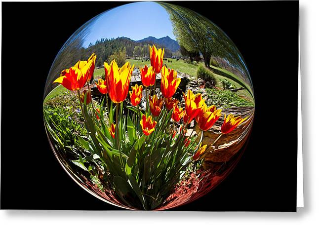Bouquet In A Bubble Greeting Card by Debra and Dave Vanderlaan