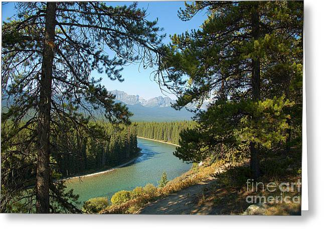 Greeting Card featuring the photograph Bow River by Bob and Nancy Kendrick