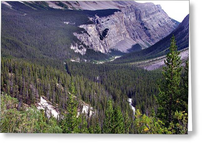 Bow River Valley Greeting Card by George Cousins