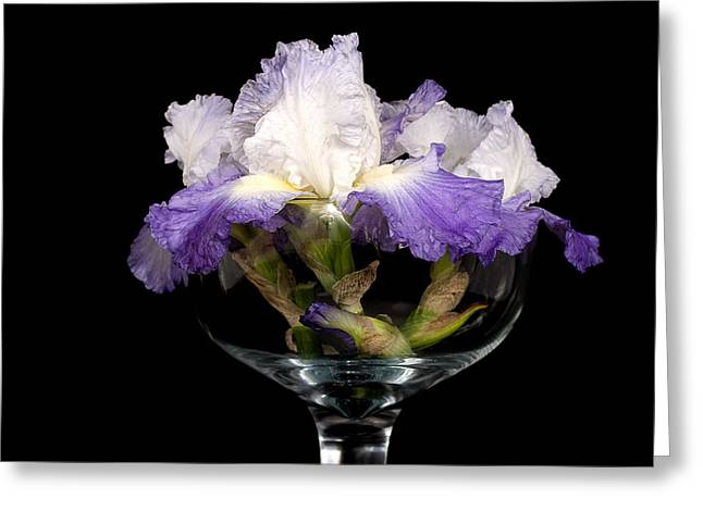 Bowl Of Iris Greeting Card by Trudy Wilkerson