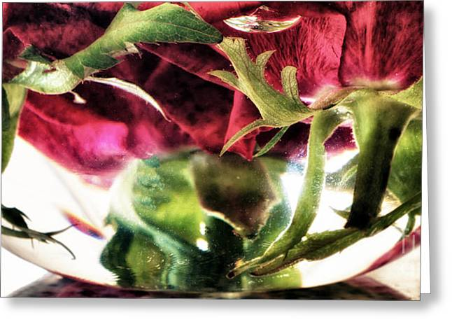 Bowl Of Roses Greeting Card by Stelios Kleanthous