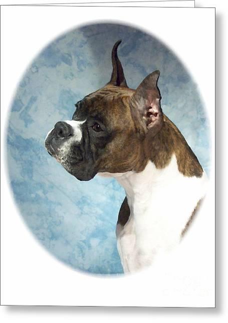 Boxer 816 Greeting Card by Larry Matthews
