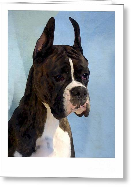 Boxer 890 Greeting Card by Larry Matthews