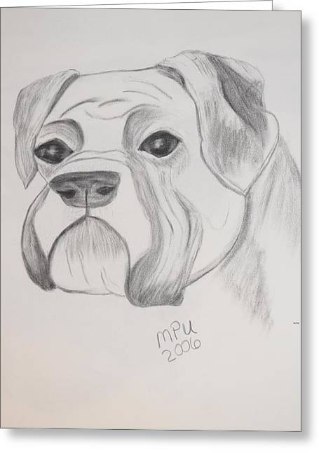 Greeting Card featuring the drawing Boxer No Crop by Maria Urso