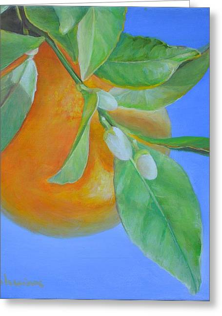 Branche En Boutons Greeting Card by Muriel Dolemieux