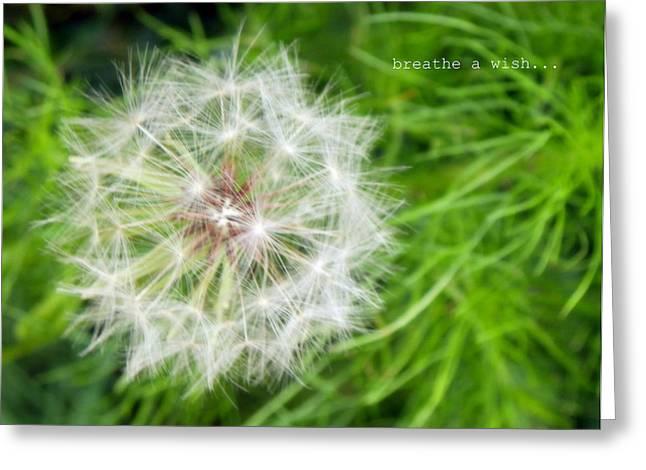 Greeting Card featuring the photograph Breathe A Wish by Robin Dickinson