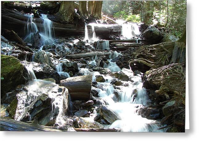 Bridal Veil Falls Creek Greeting Card