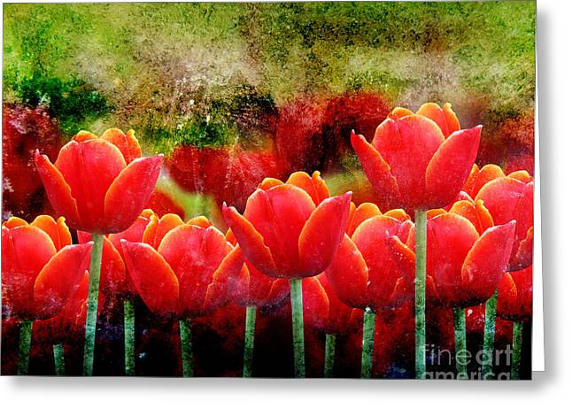 Bright Red Textured Tulip Flower Greeting Card by Angela Waye