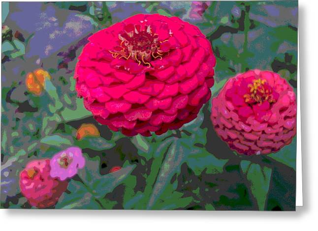 Bright Red Zinnia Flower Greeting Card by Padre Art