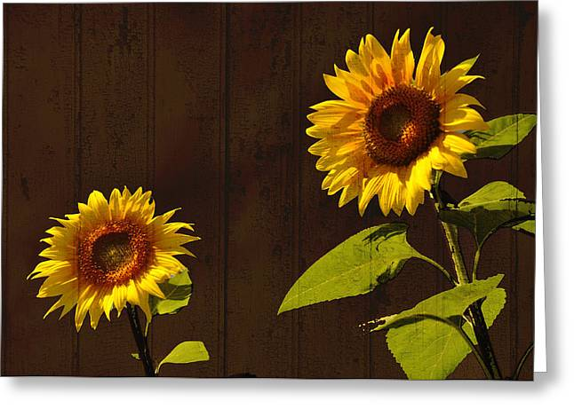 Greeting Card featuring the photograph Bright Sunflower Pair by Nancy De Flon