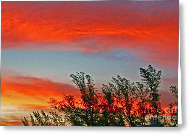 Brilliant Sunrise Greeting Card