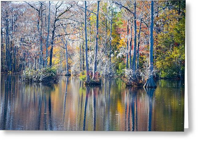 Brock Millpond 5 Greeting Card by Rob Hemphill