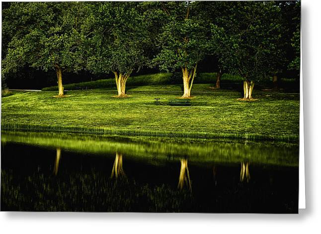 Broemmelsiek Park Green Greeting Card by Bill Tiepelman