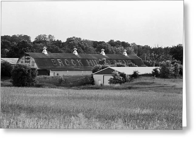 Brook Hill Dairy Farm Greeting Card by Jan W Faul